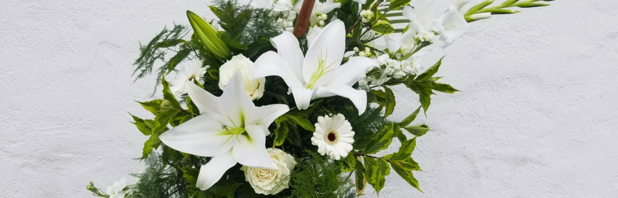 Petals Plus Flower Display 1